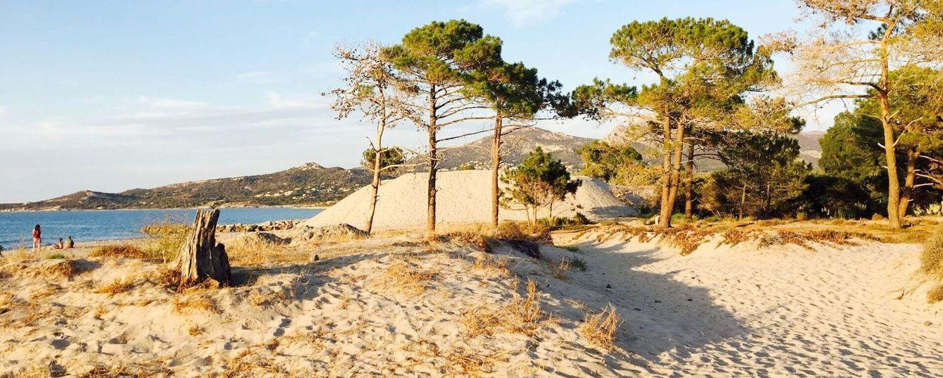 Camping Dolce Vita - Calvi